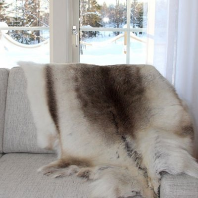 Fur of reindeer first choice